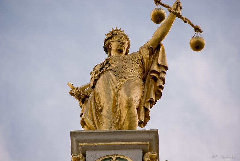 Judicial Review and Remedies in Public Law | The Student Lawyer